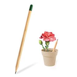 Mini Saksı - Tohumlu Kalem